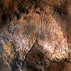 Grotte de Combarelles 16 kms