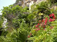 Le Jardin Exotique de la Roque-Gageac 17 kms