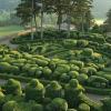 Les Jardins de Marqueyssac 15 kms